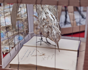Paper bird sculptures free to fly at the Book Festival
